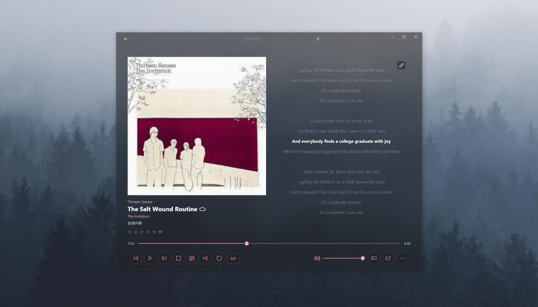 极光音乐 | 精致的Windows播放器